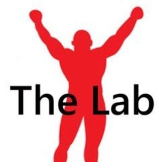 The Lab MMA Gym logo