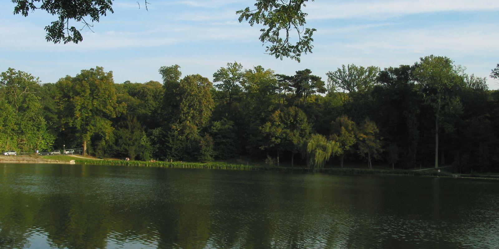 Fausses-Reposes et vraie belle balade en forêt aux portes de Paris
