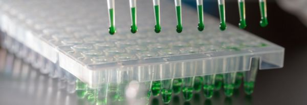 Series B Boosts British Biotech's Cell Therapy Automation With €22.6M