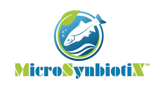 MicroSynbiotiX aims to make aquaculture impact with oral drug delivery technology