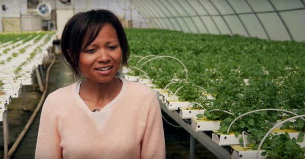 New York City startup called Re-Nuble turns food waste into fertilizer