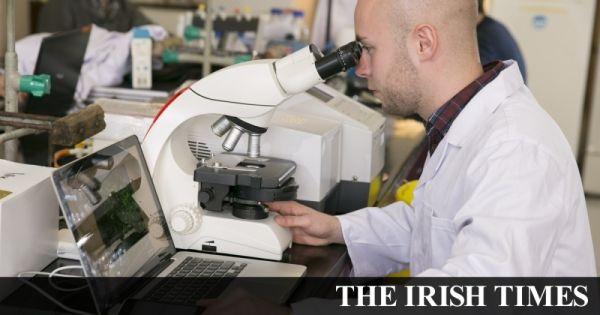 Irish molecular diagnostics company GlowDX raises €1.1 m