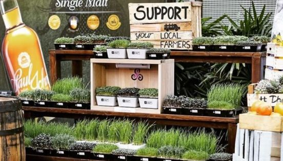 Investing in the Future of Food: 'Real human relationships are more important than ever' to ...