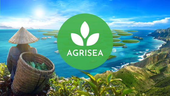 Hunger for no hunger: How Agrisea grows rice in the ocean to address food scarcity