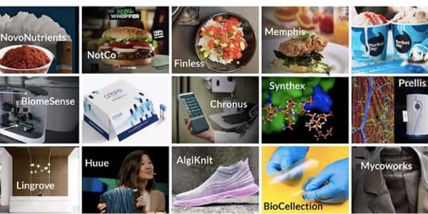 The New Biotech