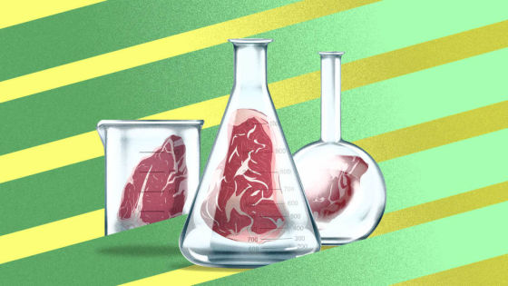 Inside UPSIDE Foods' quest to make the most perfect meat grown in a lab