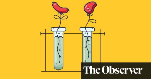 Secrets and pies: the battle to get lab-grown meat on the menu