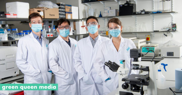 IndieBio VC Back Low-Cost Animal-Free Growth Media To Scale Affordable Cultivated Meat