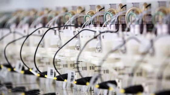 Using synthetic biology platforms to clean up indigo dye-making