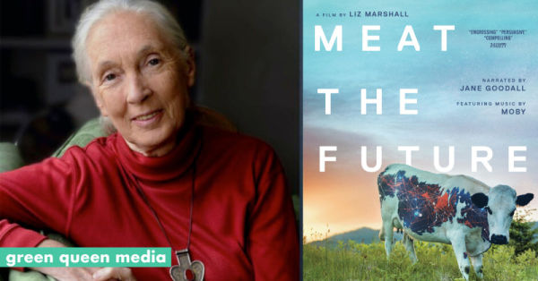 Jane Goodall To Tell Cultivated Protein Story In 'Meat The Future' Film - Green Queen