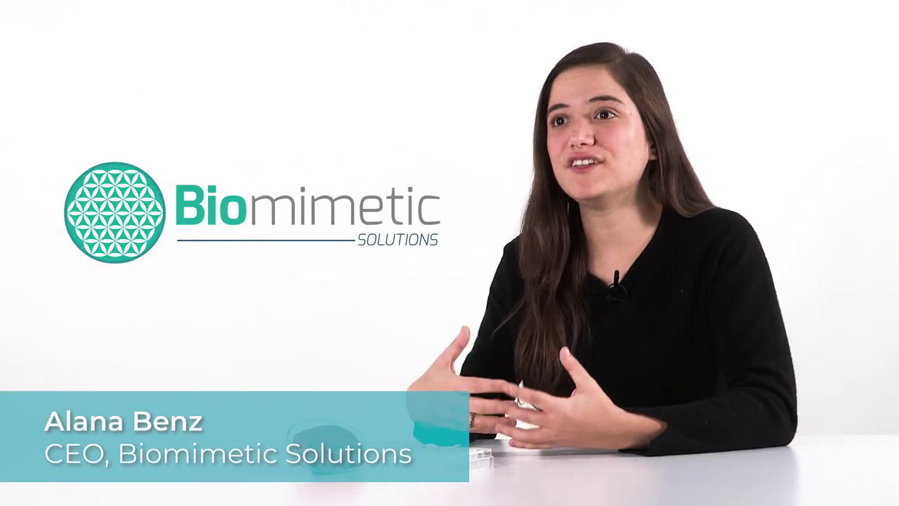 Biomimetic Solutions