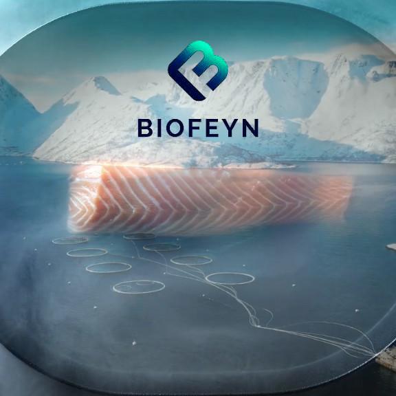BioFeyn