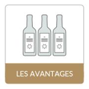 les bouteilles de vin