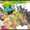 image_thumb_3 Puits & 3 Vergers pour le bien-être des enfants