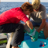 image_thumb_Support scientific research missions on Mediterranean Sea's pollution