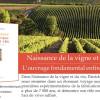 image_thumb_Naissance de la vigne et du vin