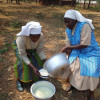 image_thumb_Pour vaincre la malnutrition au Rwanda