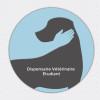 image_thumb_Sans abris animaux - Dispensaire Vétérinaire Etudiant
