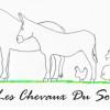 image_thumb_A cheval, On danse ! -  Les Chevaux du Sourire
