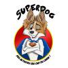 image_thumb_Superdog, des activités qui ont du chien !