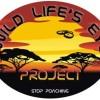 image_thumb_Wild Life's Eye Project
