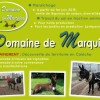 image_thumb_DOMAINE DE MARQUISE