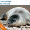 image_thumb_Protection du phoque-moine en Grèce