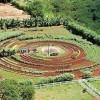 """image_thumb_Le jardin des """"choux-ettes"""""""