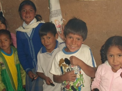 Organic vegetable gardens for children of Peru