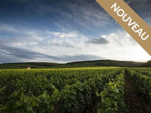 BnB Hautes-Côtes de Nuits