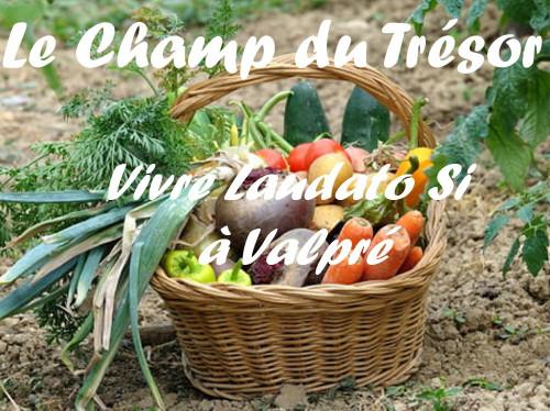 Le Champ du Trésor : un potager partagé à Valpré