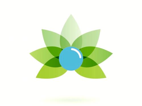Environnement - La Bulle Verte