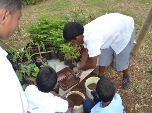 Terre de Paix Childhood Foundation