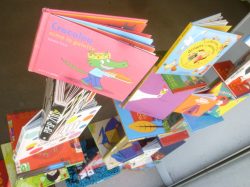 Les Oiseaux Livres, librairie effervescente