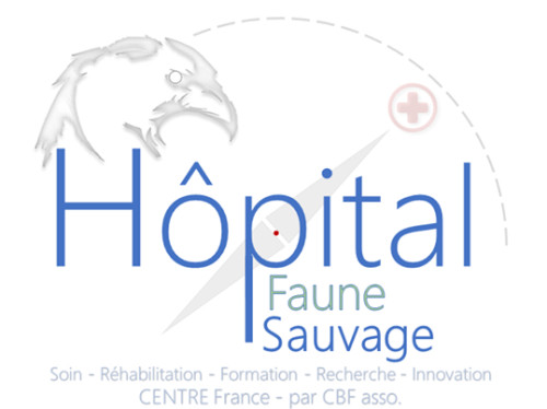 Environnement - Hôpital Faune Sauvage
