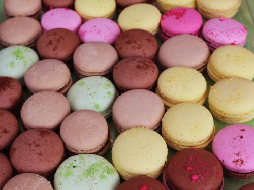 MyGatô un nouvel atelier de pâtisserie pour un nouvel espace de convivialité