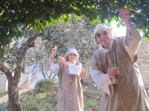 Aidez-nous à restaurer notre Oasis de paix et de réconciliation au Liban !
