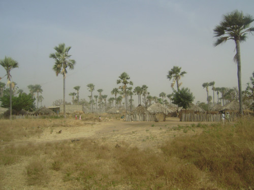 Mission construction en Tanzanie au pays Massaï