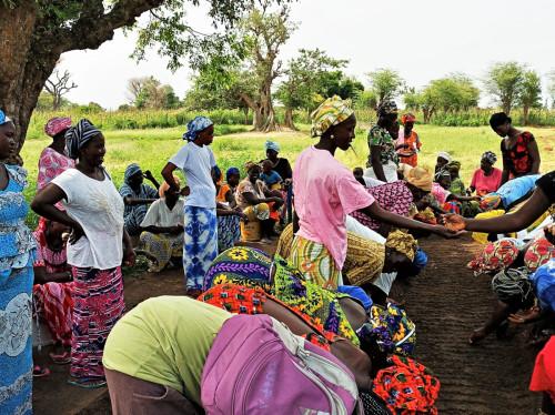 Autonomie des femmes et pratiques agroécologiques au Sénégal