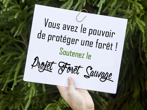 Protection de la forêt - Forêt Sauvage