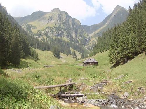 Camp scout dans les Carpates Roumaines
