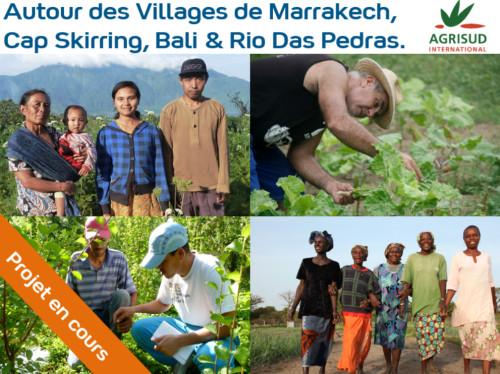 Soutien à des petits producteurs locaux autour des Villages du Club Med