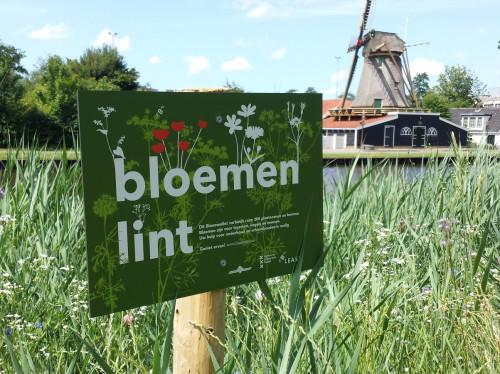 Bloemenlint by Beelease