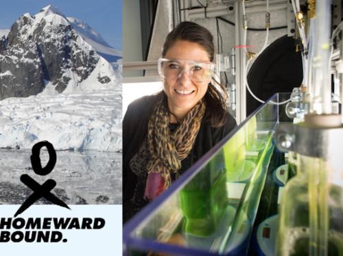 Expédition féminine en Antarctique : on passe à l´action !
