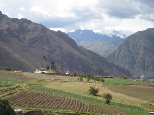 Chantier solidaire et écologique au Pérou