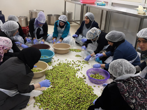 Crise au Liban : soutenons les producteurs et productrices libanais·es et les familles défavorisées, développons les circuits courts et équitables !