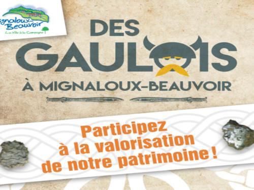 Des Gaulois à Mignaloux-Beauvoir