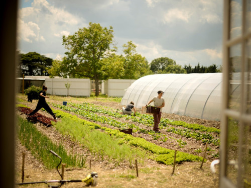 Agriculture - Fermes d'avenir