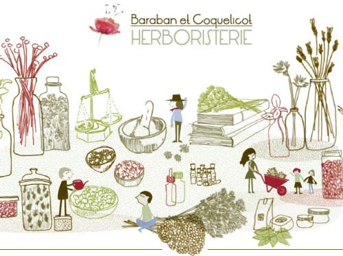 Baraban et Coquelicot - Herboristerie