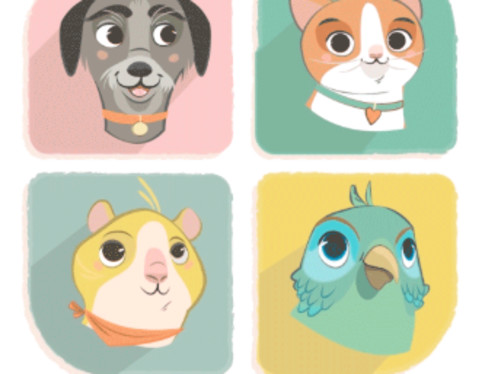 Bibou : 1er réseau social pour l'hébergement gratuit entre voisins de tous les animaux de compagnie